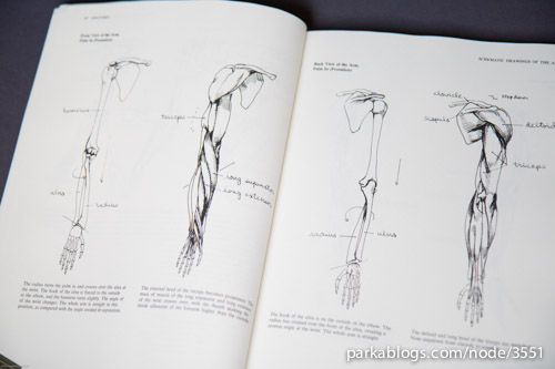 Anatomy: A Complete Guide for Artists - 02