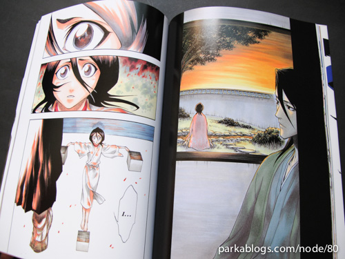 All Colour but the Black: The Art of Bleach - 06