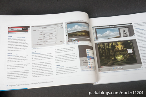 Beginner's Guide to Digital Painting in Photoshop Elements - 02