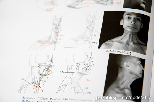 Human Anatomy for Artists: The Elements of Form - 03
