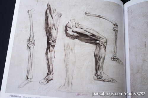 人体结构素描 (Human Anatomy Sketches) - 09