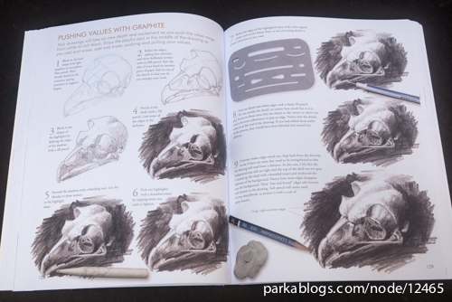 Laws Guide to Nature Drawing and Journaling - 04