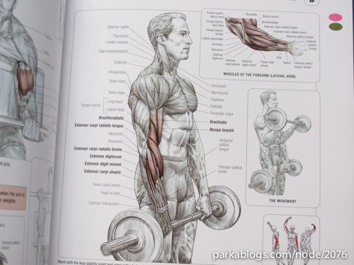 Strength Training Anatomy - 02